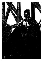 Batman with the Bat-Signal - LA - 2013 Signed Comic Art