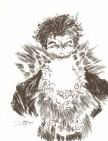 Chamber Commission - Signed Comic Art