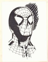 Spider-Man Portrait Commission - Signed Comic Art