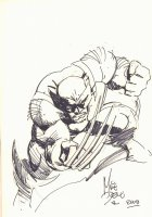 Wolverine Commission - 2009 Signed Comic Art