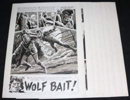 Eerie #8 Eight Page Complete Story - 'Wolf Bait!' - LA - 1967 Signed Comic Art