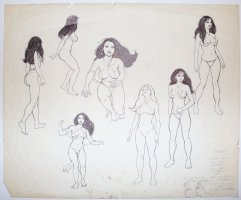 Fire and Ice Teegra Model Sheet - 7 Ink Drawings and 2 Pencil Head Sketches