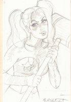 Harley Quinn Pencil Drawing - Signed Comic Art